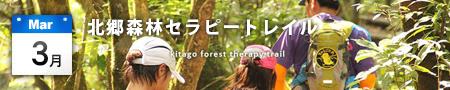 北郷森林セラピートレイル